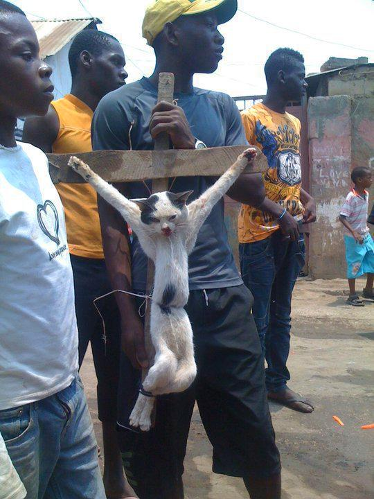 Muslim-Nigeria-Cat-Crucifixion