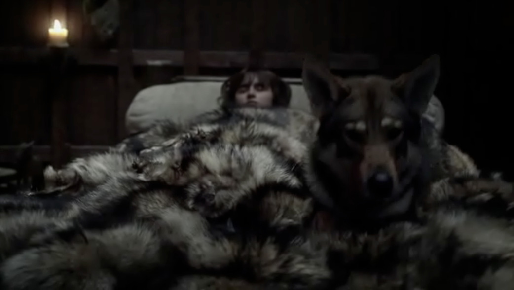 Game-of-Thrones-wolf