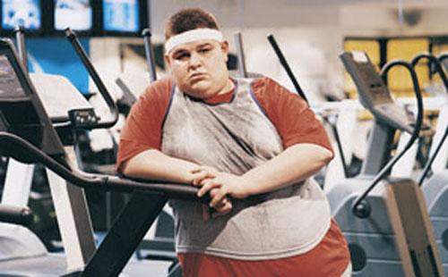 gordo academia