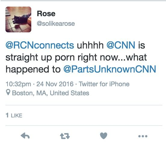 Rose assiste pornografia na CNN acidentalmente.