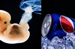 pepsi, senomyx, bebes abortados