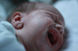 Bebês, abortos, democratas