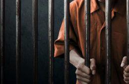 TJSP, presos, soltos