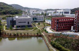 Wuhan, virus, solto