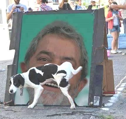 Cachorro mijando em Lula