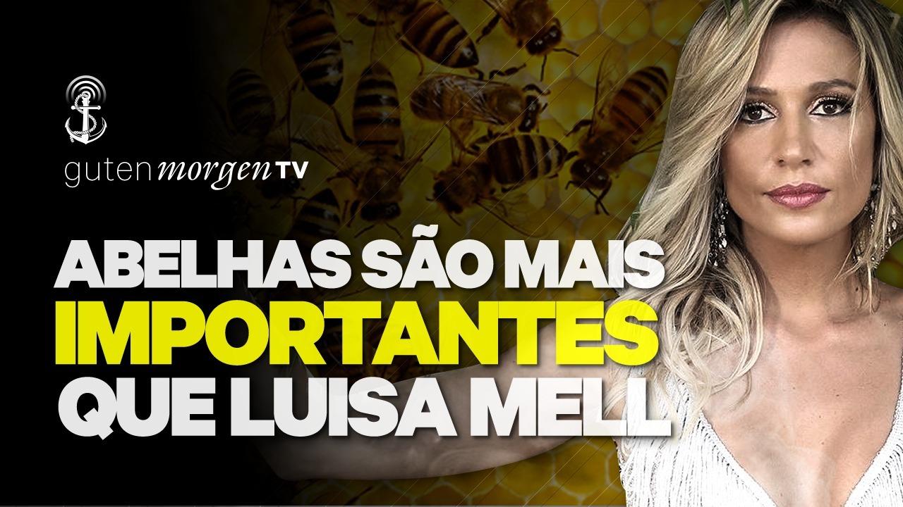 Guten Morgen TV - Abelhas são mais importantes do que Luisa Mell