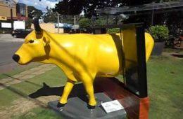 vaca amarela